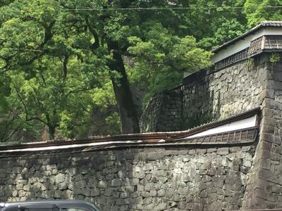 熊本城震災被害